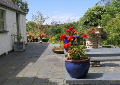 Study patio with geraniums.