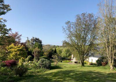 Summer towards Garn Fawr Chilean flame tree
